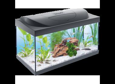Tetra Starter Line LED аквариумный комплекс 54 л.